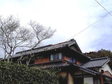 20050322_iibaru2