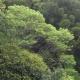 2011-05-02-153122-seiko-epson-corp
