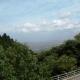 20120915-ajisai-23910_008w750