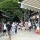 20120915-ajisai-23910_015w600