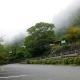 20120915-ajisai-2w640
