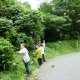 20120915-ajisai-2w640_2