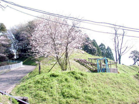 Sakura_syougakkoui021_3